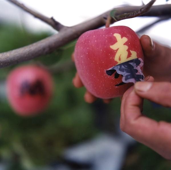 branded+apple